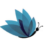 Imatge del perfil de Grupo Butterfly