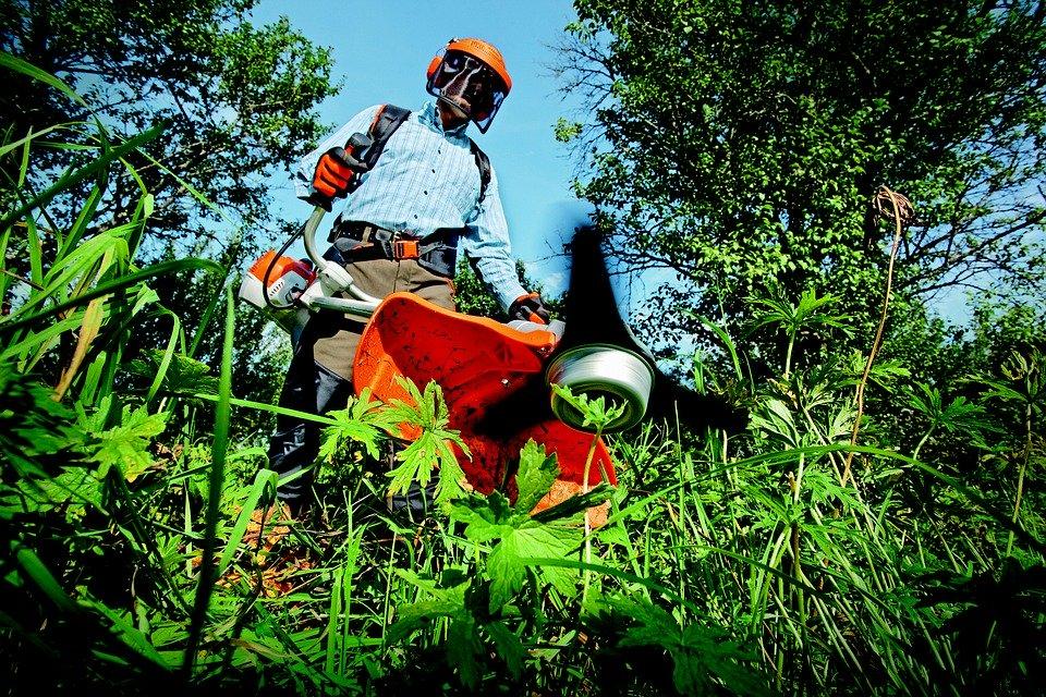 2019 Operacions bàsiques per al manteniment de jardins, parcs i zones verdes (MF0522_1)
